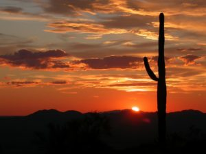 Scottsdale and the rest of Phoenix are filled with natural beauty.