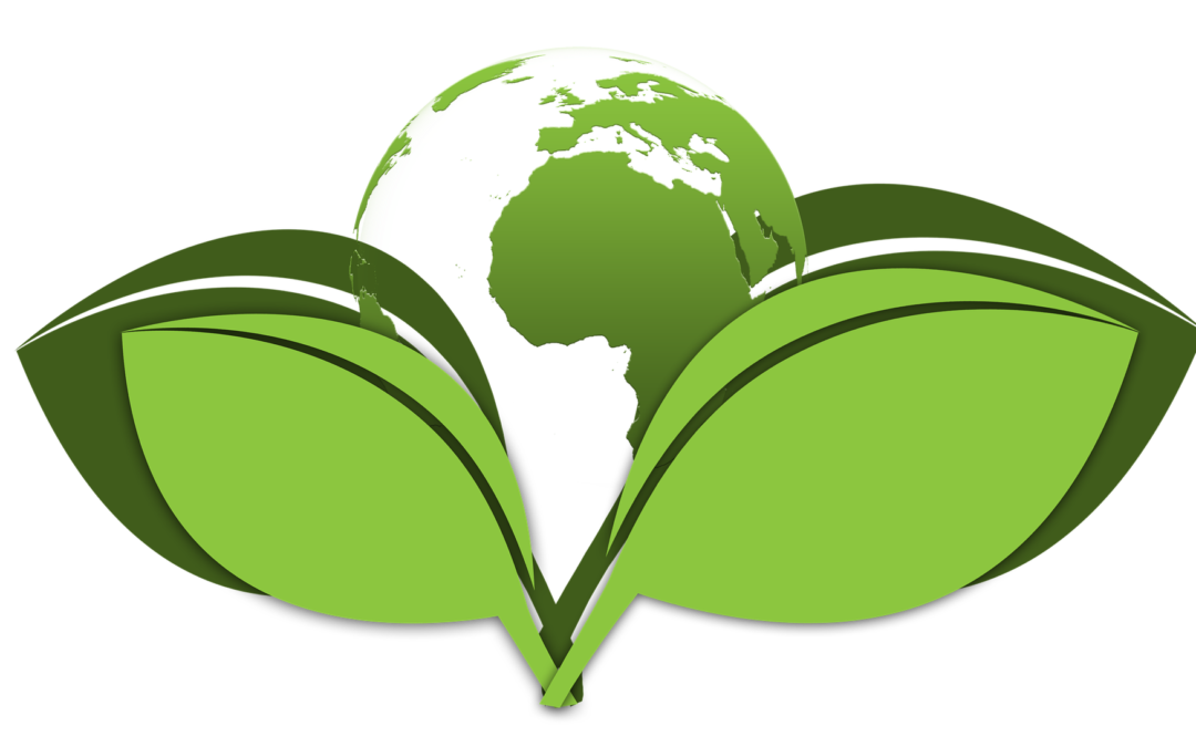 3 Low Cost & Minimal Effort Ways to Make Your Dental Practice More Eco-Friendly
